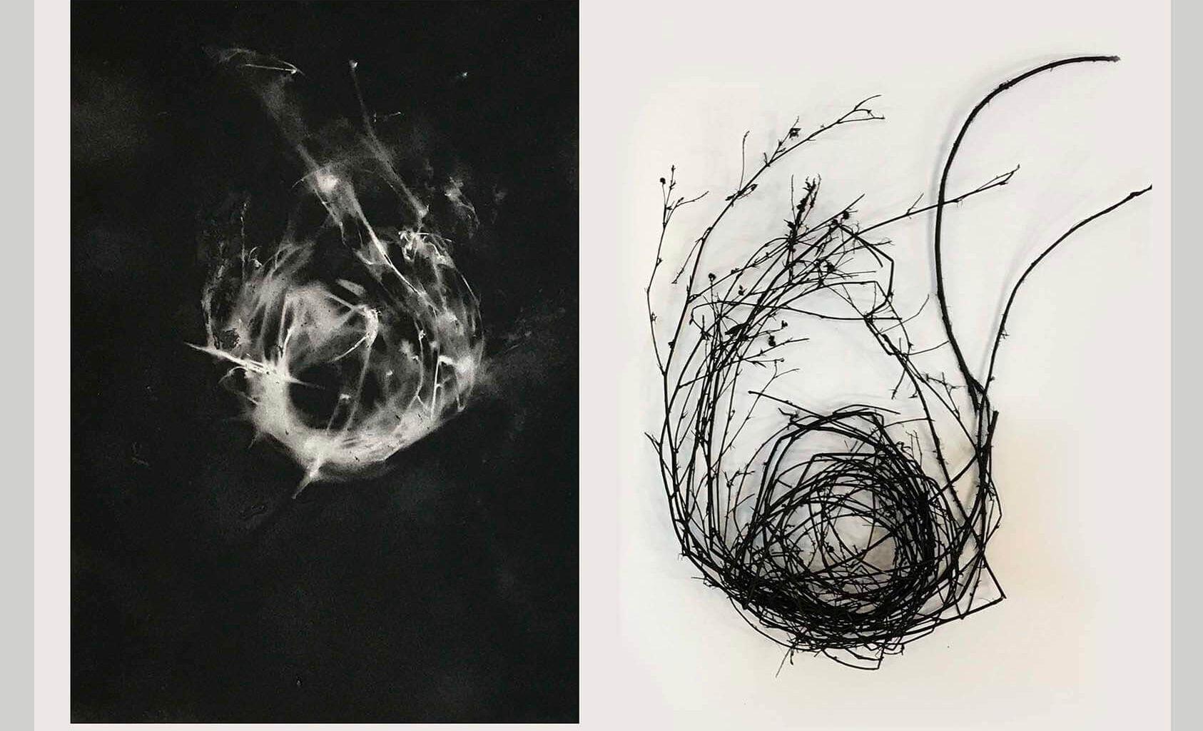 نمایشگاه ملاقات در سلول ، مجموعه آثار آوین فرهادی Avin Farhadi